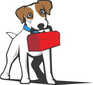Jack-Russell-TerrierToolBox